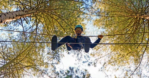 High in the trees as part of the Steppin' up project